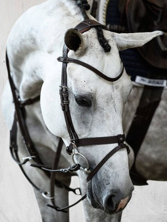 PS of Sweden London bridle limited edition
