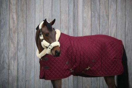KENTUCKY SHOW RUG 160 GR bordaux